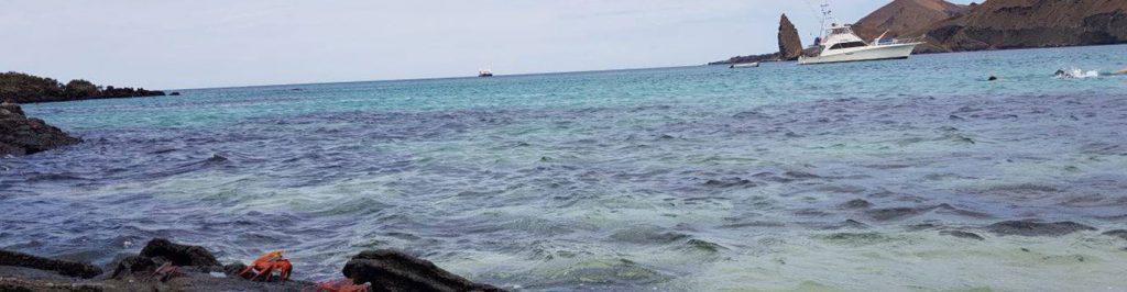 Galapagos islands, galapagos